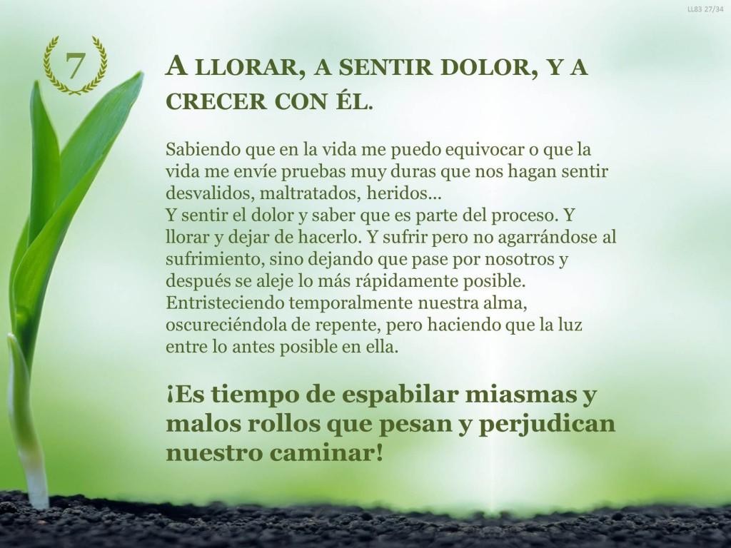 Decalogo7