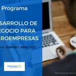 Microempresas Sevilla